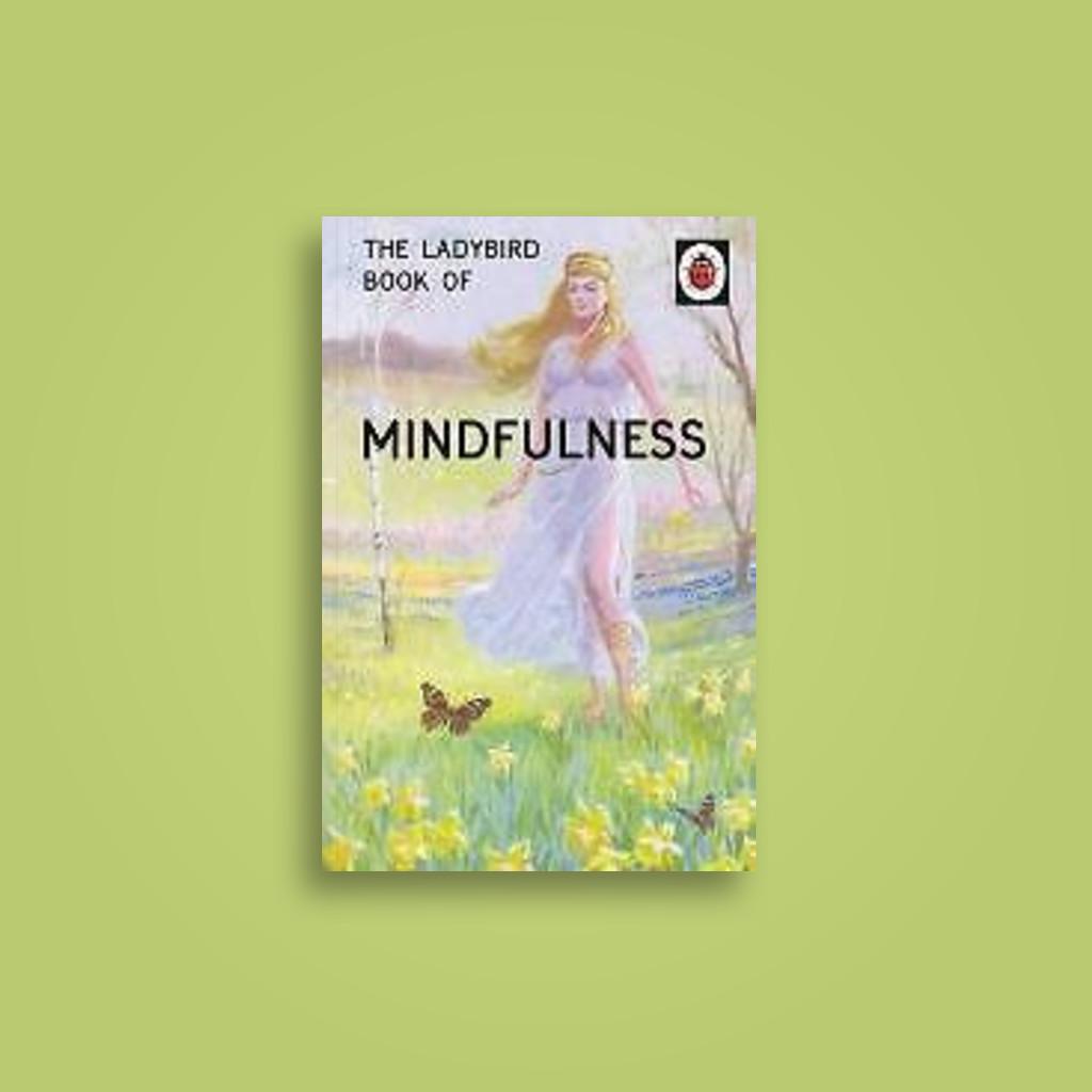 The Ladybird Book Of Mindfulness Jason Hazeley Near Me Nearst