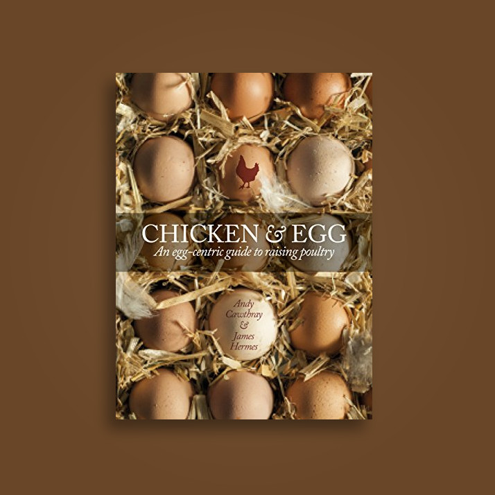 Chicken & Egg: An Egg-Centric Guide to Raising Poultry Near Me   NearSt