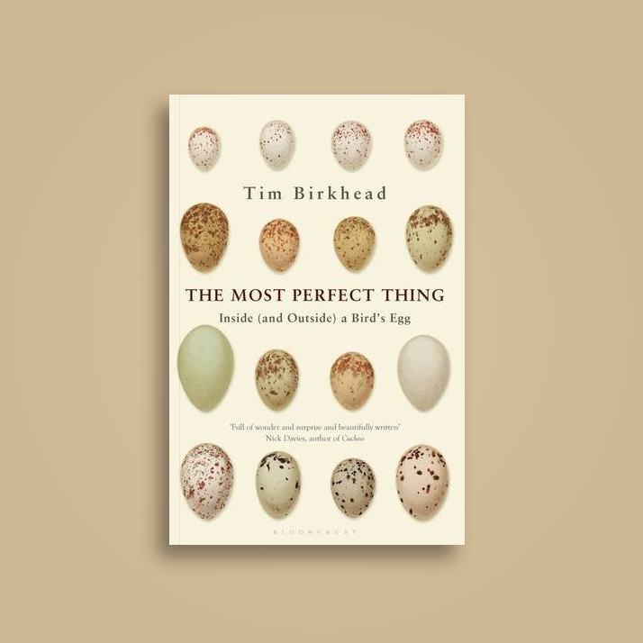 The Most Perfect Thing: Inside (and Outside) a Bird's Egg - Tim Birkhead