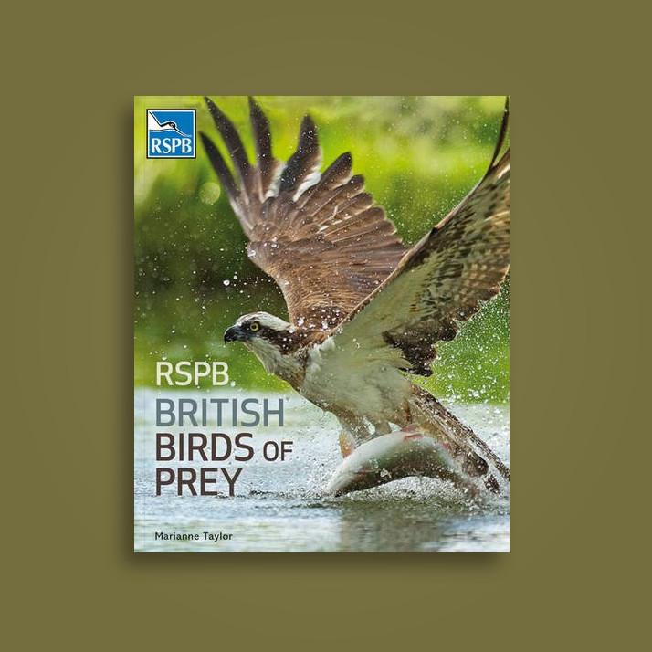 Rspb British Birds Of Prey Marianne Taylor Near Me Nearst Find