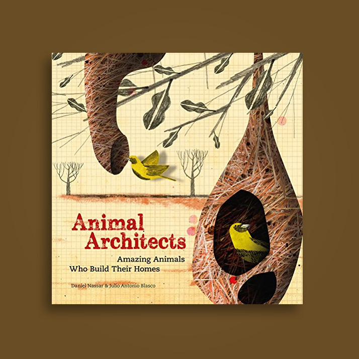 Animal architects amazing animals who build their homes for Find an architect near me