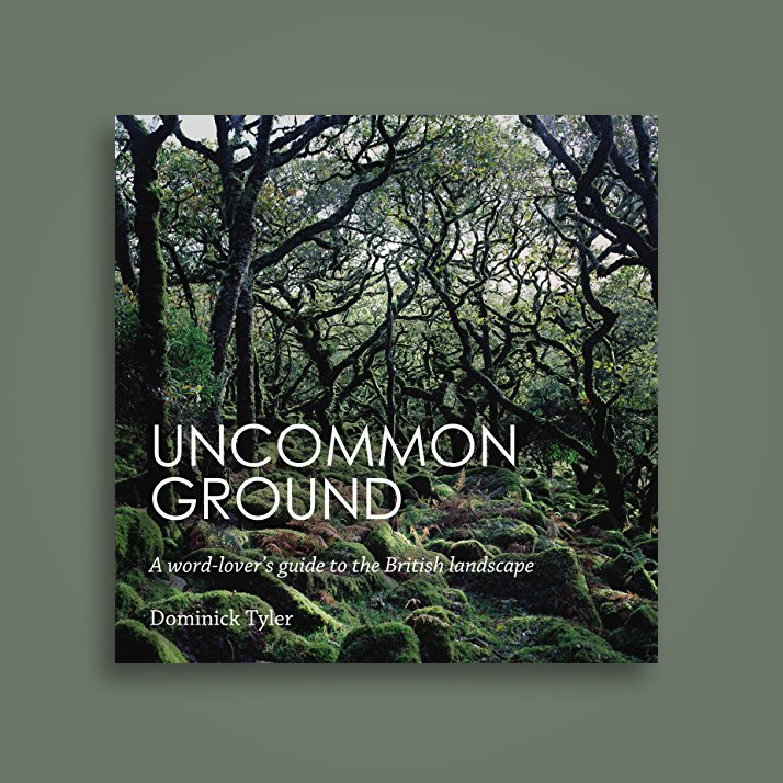 Uncommon Ground: A word-lover's guide to the British landscape - Dominick Tyler