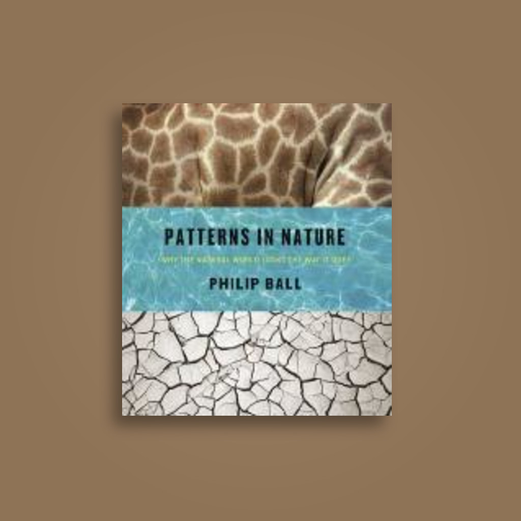 Patterns in Nature: Why the Natural World Looks the Way It Does - Philip Ball