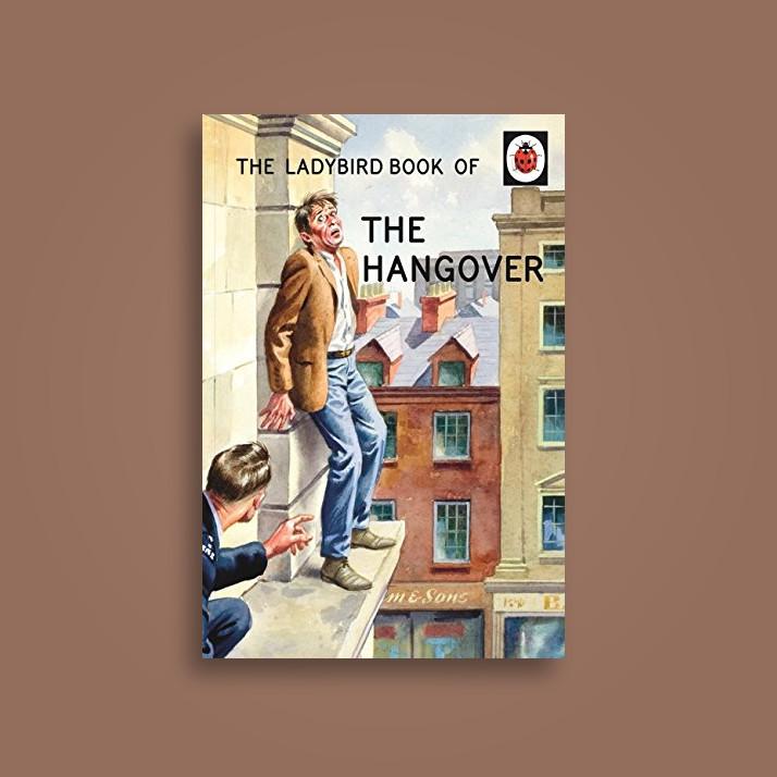 The Ladybird Book of the Hangover - Jason Hazeley, Joel Morris