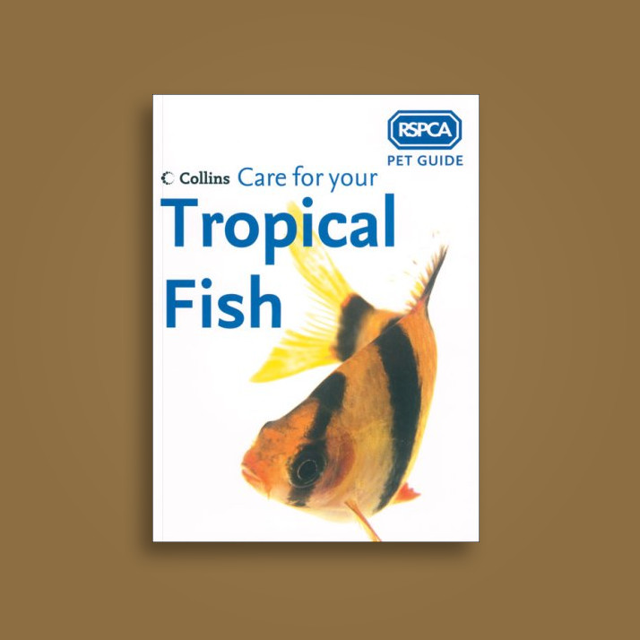 Care for Your Tropical Fish - RSPCA Near Me | NearSt